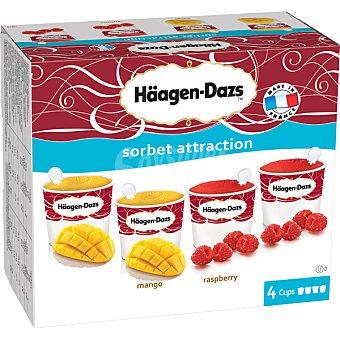 Häagen-Dazs Tarrinas sabor mango 2 unidades y framabuesa 2 unidades de 100 ml 400 ml 2 unidades de 100 ml