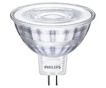 Philips Bombilla Led dicroica 5W con casquillo GU5.3 y luz fría
