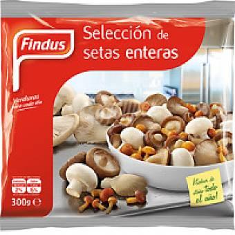 Findus Selección de setas Bolsa 200 g