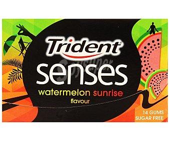 Trident Chicles sabor Sandia 12u 27g