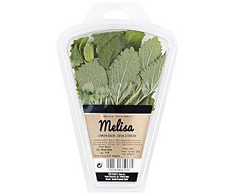 Auchan Eneldo 15 gramos