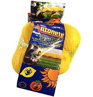 Limón Bolsa 500 g
