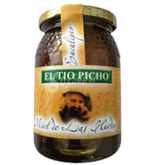 El Tio Picho Miel eucalipto 500 g