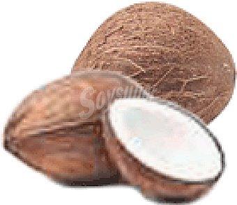Coco 1 pec