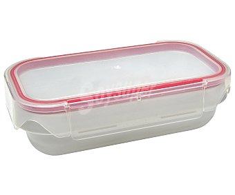 IRIS Lunch Box Recipiente rectángular hermético Lunch Box, tapa transparente, de capacidad iris 0,6 litros