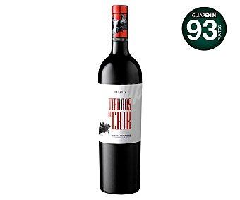 Cair Vino tinto reserva con denominación de origen Ribera del Duero tierras DE Botella de 75 cl