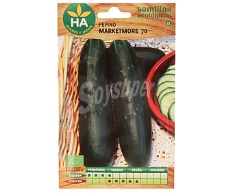 HA-Huerto y Jardín Semillas ecológicas para sembrar pepinos de la variedad Marketmore 70 Semillas Pepino