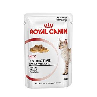Royal Canin Alimento húmedo para gatos gelatina para mantener la salud del tracto urinario Sobre 85 g