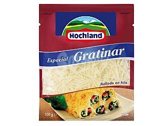 Hochland Queso rallado Bolsa 100 g