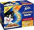 Comida para gatos Crunchy Selección de sabores en Gelatina Pack 12 x 100 g Purina Felix