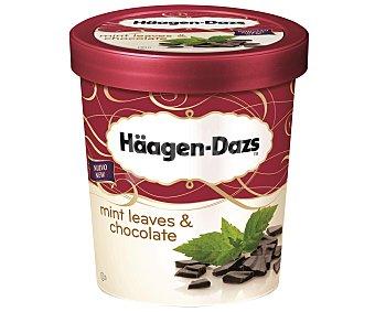 Häagen-Dazs Tarrina de helado de chocolate con menta 500 ml