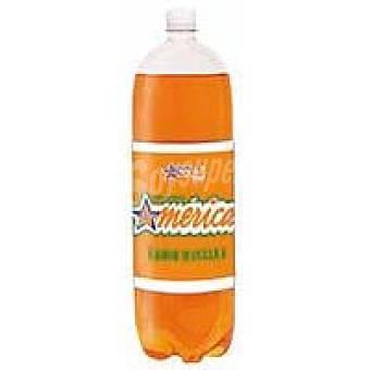 America Manzana Botella 2 litros