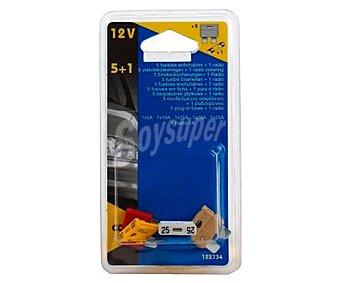 Cartec Lote de 6 fusibles enchufables (5A-10A-15A-20A-25A) + 1 de radio (2A) cartec