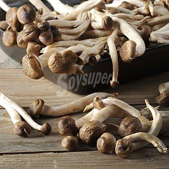Carrefour Setas silvestres premium Bandeja de 300 g