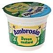 Crema devon custard 120 g Ambrosia