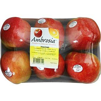 Ambrosia Manzanas peso aproximado Bandeja 1 kg