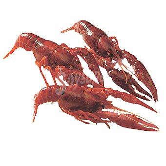 Cangrejos de río vivos Al peso 1 kg