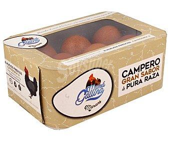 MAMÁ GALLINA MARANS Huevos camperos con gran sabor, de categoria A y clase M-L 6 uds