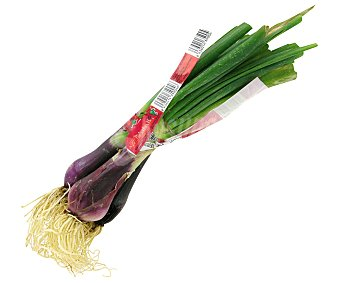 Verduras Curro Cebolleta Roja 1u