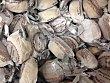 Surtido granel mantecado coco a granel 50 g peso unidad La Muralla