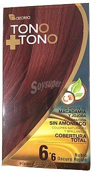 AZALEA Tinte coloración tono sobre tono Nº06.6 rubio oscuro rojizo 1 unidad
