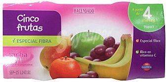 Hacendado Tarrito cinco frutas y fibra a partir 4 meses Pack 2 x 200 g - 400 g