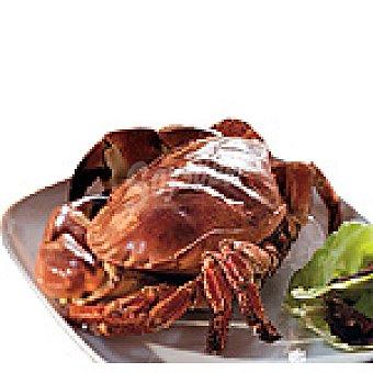 francés Buey de mar vivo peso aproximado pieza al peso kg 600 g