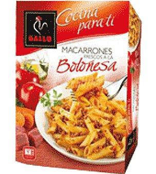 Gallo Macarrones boloñesa Gallo Caja de 325 g