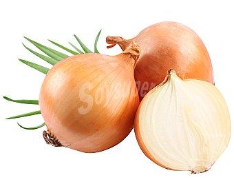 Auchan Producción Controlada Cebollas biológicas Malla de 1 kg