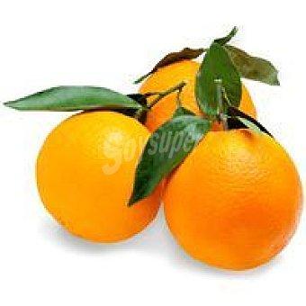 Naranja con hoja 1 kg