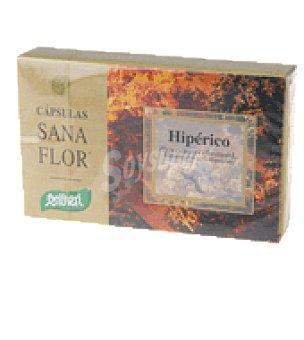 Santiveri Plantas hiperico 24 g