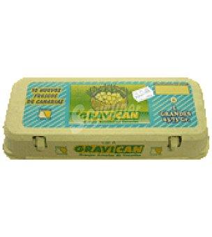 Gravican Huevos L 10 unidades