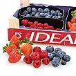 Surtidos de fresas y frutos rojos 1ud 1 ud Carrefour