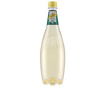 Schweppes Ginger Ale Botella 1 litro