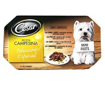 Cesar Comida húmeda para perros surtido (pavo y buey,pollo, buey y cordero) 4 Tarrinas de 150 Gramos