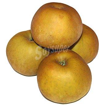 Reineta Manzana extra al peso