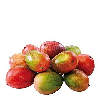 Mango Bolsa de 1000.0 g.
