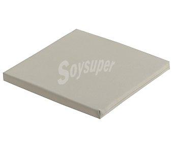 COMATEX Cojín para silla modelo Grey Line de color beige, de 40x40x3 centímetros lavable y de gran resistencia al exterior 1 unidad