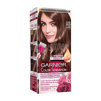 Color Sensation Garnier Tinte espresso nº 5.15 coloración permanente intensa Caja 1 u