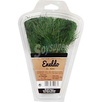 Herbex Eneldo Estuche 20 g