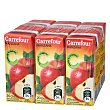 Zumo de manzana concentrado 6 bricks de 20 cl Carrefour
