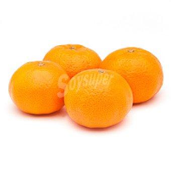 E. Natur 1 Mandarina kg