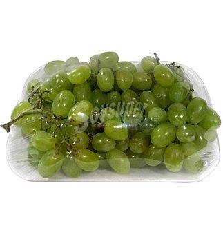 Uva blanca de importacion en Bandeja de 1200 g