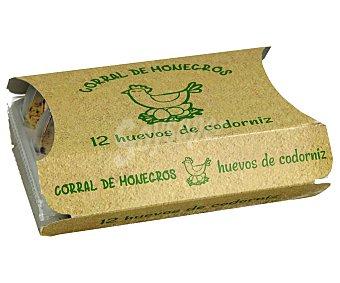 Monegros Huevos de codorniz 12 uds