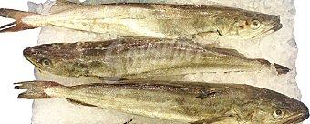 VARIOS Merluza fresca entera europea pincho (preparado: destripada abierta en libro con cabeza cortada) granel 1,5 kg peso aprox.