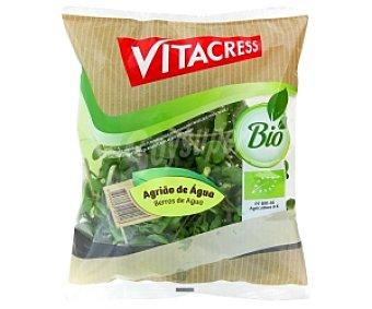 VITACRESS Berro Ecológico Bolsa de 100 Gramos