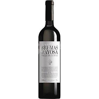 Brumas de Ayosa Vino tinto D.O. Valle de Guimar botella 75 cl Botella 75 cl