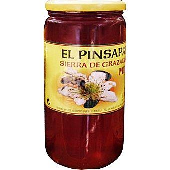 PINSAPAR Miel de la serrania gaditana frasco 1 kg Frasco 1 kg