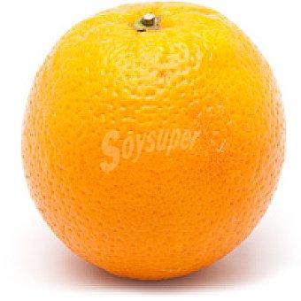 Naranja al peso 1 unidad