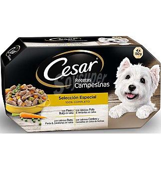 Cesar receta campesina Comida perro 4X 150 G
